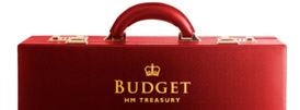 The Budget Summary - Freestyle Accounting