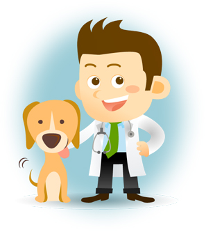 Limited Company Accountants for Locum Vets