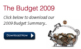 Freestyle Accounting - Budget Summary 2009